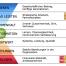 Nachhaltigkeit Organisationskultur